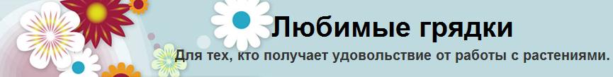 Сайты друзей
