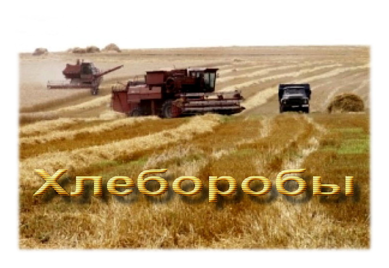 Роман ШОИХЕТ Хлеборобы