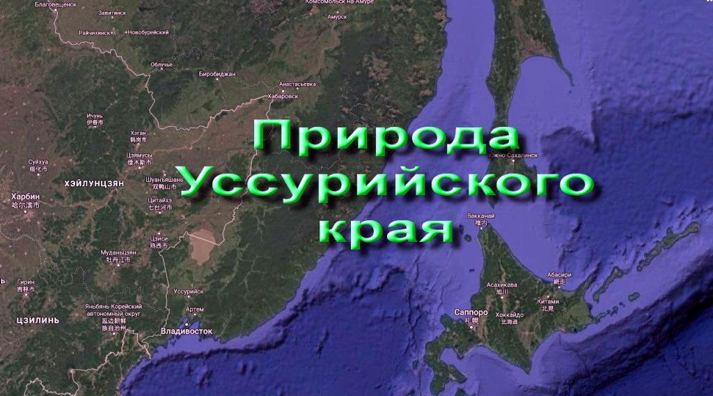 Природа Уссурийского края